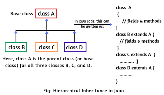 Hierarchical inheritance in Java