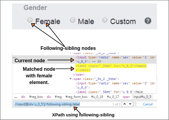 XPath Following-sibling Axis