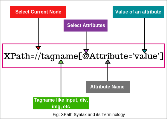 Syntax of XPath in Selenium WebDriver