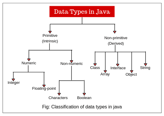 Types of data types in Java